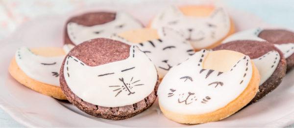 galletitas de gatitos